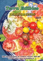 Terra Edibles - Organically grown vegetable and flower seeds including uncommon, rare and heirloom varieties many with unique qualities such as superior flavour, higher nutritive value, low space requirements, or bee plant. Heirloom Tomato Seeds, Heirloom Tomatoes, Tomato Seedlings, Growing Tomatoes In Containers, Bean Seeds, Seed Catalogs, Organic Seeds, Lavender Oil, Flower Seeds