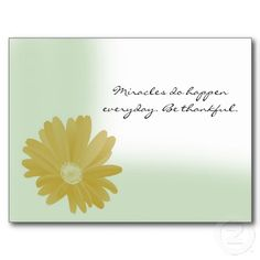 Miracles Do Happen Everyday Sunflower Postcard