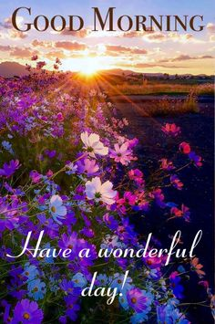 In today's post, we are presenting good morning msg. If you are searching for good morning msg you are welcome to our website. Good Morning Today, Good Morning Nature, Good Morning Quotes For Him, Good Morning Funny, Good Morning Messages, Morning Humor, Monday Morning, Good Morning Beautiful Pictures, Good Morning Photos