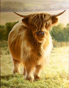 Representational | JenniferGrayArt.com.  AHMazing...I need this highland cow in my house.