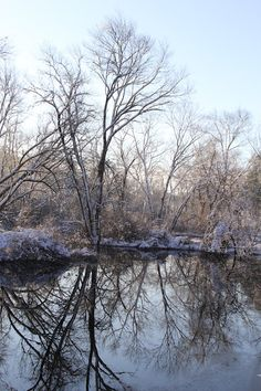 Winter Pond Photography by NJS images #winterdecor #newengland #njsimages