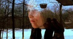 Elia Kazan, Film Genres, War Film, Critique, Blu Ray, Good And Evil, Right Wing, Human Nature, The Visitors