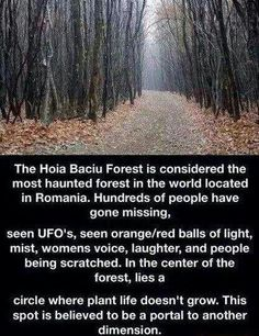 I'd love to check this out :) Hoia Baciu Forest in Cluj-Napoca Romania. The most haunted forest in the world Creepy Stories, Ghost Stories, Horror Stories, Strange Stories, Fun Stories, Creepy Facts, Wtf Fun Facts, Strange Facts, Creepy Quotes