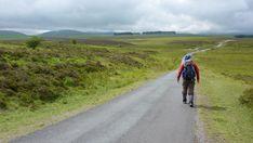 Country Walks Near London - Walks Less Than 1 Hour Away