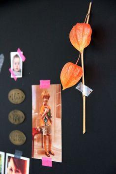 Bricolage maison : habiller un mur de ses livres préférés - Tête d'ange
