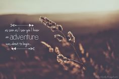 Adventure Picture Quote by Orchard Girls Blog #adventure #quote