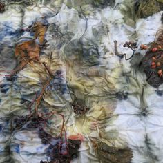 eucalyptus, dogwood berries on linen fabric...GB