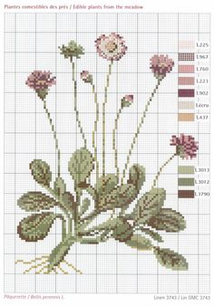 Just Cross Stitch, Cross Stitch Needles, Cross Stitch Flowers, Cross Stitch Charts, Cross Stitch Designs, Cross Stitch Patterns, Cross Stitching, Cross Stitch Embroidery, Embroidery Patterns