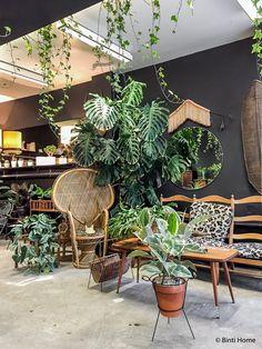 garden design - Perfect Diy Vertical Garden Indoor 30 Best Indoor Jungle Ideas That Are Calm And Peaceful Plants And