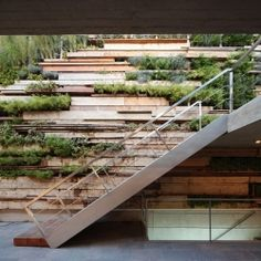 This mixed use space features a sustainable garden made from recycled wood planks.