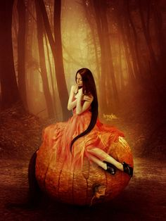 Cinderellas Dream by Kryseis-Retouche.deviantart.com on @deviantART