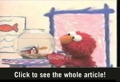 He's Elmo and he knows it :-D. Elmo does a cover version of LMFAO's Sexy and I know it.