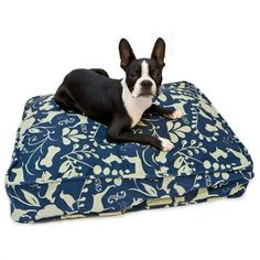 Navy and white dog bed, highly suitable for the most lazy
