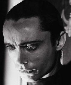 Udo Kier in Blood For Dracula (1974, dir. Paul Morrissey) (via)