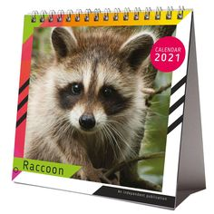 Raccoon 2021 Desktop Calendar NEW With Christmas Card Happy New Year 2021 IMPORTANT INFORMATION REGARDING COVID-19 PHOTO GALLERY  | PBS.TWIMG.COM  #EDUCRATSWEB 2020-05-23 pbs.twimg.com https://pbs.twimg.com/media/EYhCyNyWkAIN-HW?format=jpg&name=small