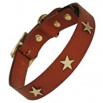 Creature Clothes Tan Leather Dog Collar With Brass Stars
