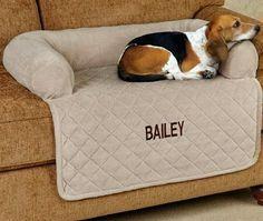 Uma ótima ideia pra casa e para os amantes de bichos (como eu, rsrs). Agora ele pode subir no sofá com muito estilo!!