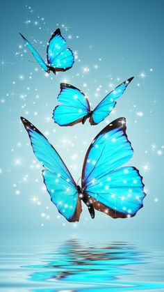 Blue Butterflies #iPhone #6 #Wallpaper