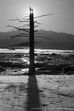 Turnagain Arm in Black and White | Outdoors Photos | ADN.com