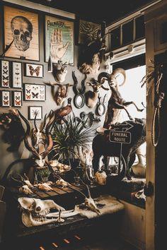 """Rest In Pieces"" shop, Richmond, Virginia Cabinet de curiosités 😍"