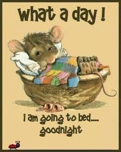 Good night sister and all, sweet dreams . Cute Good Night, Good Night Sweet Dreams, Good Morning Good Night, Day For Night, Good Night Sleep, Evening Greetings, Good Night Greetings, Good Night Messages, Good Night Quotes