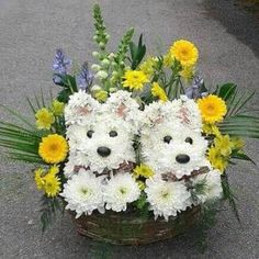 Creative Flower Arrangements, Beautiful Flower Arrangements, Floral Arrangements, Flower Bouquet Diy, Diy Flowers, Beautiful Flowers, Fresh Flowers, Deco Floral, Arte Floral