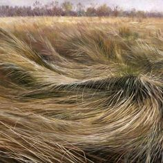 Meg Stevens ~ Sea of Grasses, 1991