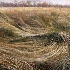 Meg Stevens ~ Sea of Grasses, 1991