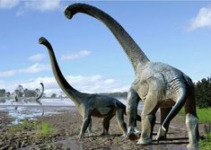 Researchers have announced the naming of Savannasaurus elliottorum, a new genus and species of dinosaur from western Queensland, Australia. The bones come from the Winton Formation, a geological deposit approximately 95 million years old. Savannasaurus was a medium-sized titanosaur, approximately half the length of a basketball court, with a long neck and a relatively short tail.