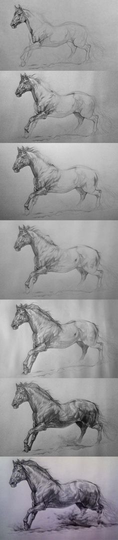 Part 1 here, more technical: fav.me/d6k7ko1 I made all these drawing from imagination. But I have been looking at horses for a long time and I look at them every day from life. If you want to get g...
