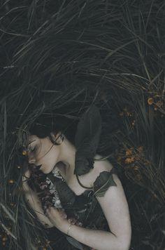Lisa Griffin's Portfolio - - Fine Art