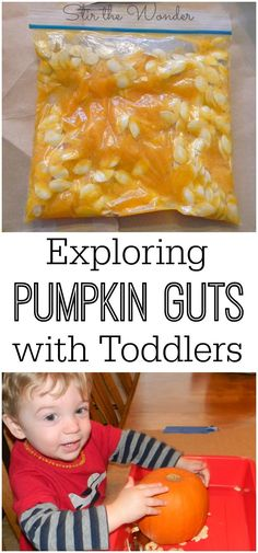 Allow your toddler to freely and safely explore pumpkin guts with this mess-free pumpkin guts sensory bag! It's great for kids who don't like slimy textures too! (fall crafts for kids plays) Toddler Fun, Toddler Snacks, Toddler Teacher, Infant Activities, Toddler Fall Activities, Fall Toddler Crafts, Fall Crafts, Toddler Themes, Indoor Activities
