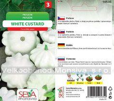 Semena   Patizon WHITE CUSTARD   Velkoobchod Monsiva, s.r.o. Custard, Harvest, Cream