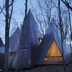 Woodland home in Japan / designed by Hiroshi Nakamura