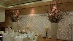 The Radisson Hotel, Sligo Wedding Venue Decorations, Wedding Venues, Table Decorations, Radisson Hotel, Chandelier, Trees, Ceiling Lights, Furniture, Beautiful