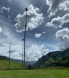 The 60 meter tall palm trees of Colombia's Cocora Valley (and me for scale) : backpacking Air Travel Tips, Travel Tips For Europe, Us Travel, Beautiful Places In The World, Backpacker, Business Travel, Palm Trees, Wind Turbine, Wilderness