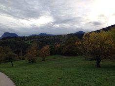 Passeggiata ai piedi delle #Dolomiti di #Brenta a pochi passi dalle #TermediComano tra i colori dell'#autunno! #visitacomano #trentino #trekking
