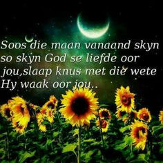 This Photo was uploaded by Afrikaanse Quotes, Goeie Nag, Goeie More, Good Night Wishes, Prayers, Image, South Africa, Garden, Animals