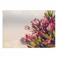 KESS InHouse Sylvia Coomes 'Flowers in Paradise' Green Pink Dog Place Mat, 13' x 18' >>> Quickly view this special  product, click the image (This is an amazon affiliate link. I may earn commission from it)