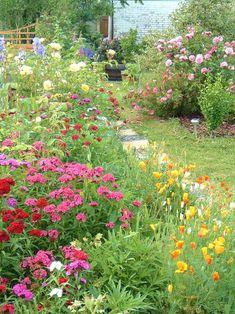 Flowergarden ☼ less grass