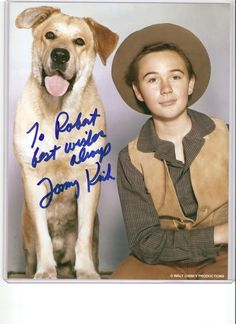 Tommy Kirk who stared in such Disney films as The Shaggy Dog and Old Yeller is with us still and is 73 now. Disney Films, Disney Pixar, Walt Disney, Hollywood Icons, Old Hollywood, Old Yeller, Large Dog Breeds, Young Actors, Shaggy