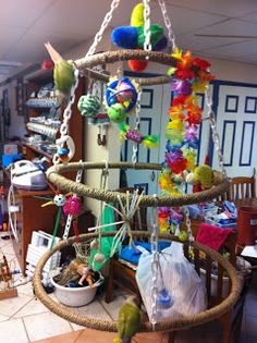 ♥ Pet Bird DIY Ideas ♥ hoops for birdies! good idea for my hoop supply scraps. Diy Parrot Toys, Diy Bird Toys, Bird Play Gym, Homemade Bird Toys, Budgie Toys, Cockatoo Toys, Bird Mobile, Play Mobile, Bird Stand