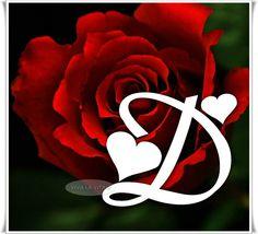 "Monogram ""D"" * s rudou růží Alphabet Stencils, Alphabet Art, D Letter Design, Lettering Design, Hand Lettering, I Miss You Wallpaper, Doodle Art Letters, Happy Birthday Daughter, Shiva Lord Wallpapers"