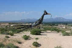 Here Are The 10 Weirdest Places You Can Possibly Go In New Mexico,  1. Giant Roadrunner Statue, Las Cruces