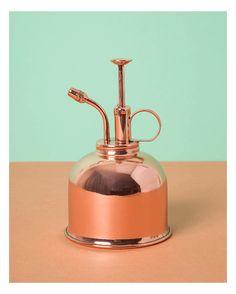 Elégant petit vaporisateur de 300 ml, en cuivre, parfait pour arroser les petites plantes ou les filles de l'air.