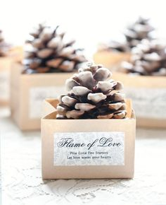 DIY Winter Wedding Favor Idea for Pinecone Fire Starters