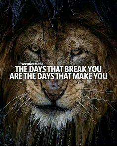342 motivierende und inspirierende Zitate quotes quotes about love quotes for teens quotes god quotes motivation Inspirational Quotes About Success, Motivational Quotes For Success, Great Quotes, Positive Quotes, Inspiring Quotes, Motivational Message, Lion Quotes, Me Quotes, Qoutes