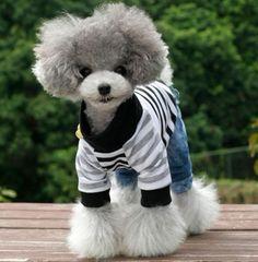Too cute! <3 love!