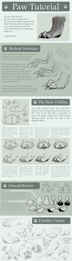 Wolf Paw Tutorial by ~Anuwolf on deviantART
