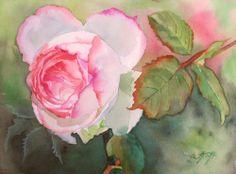 rose • watercolor painting